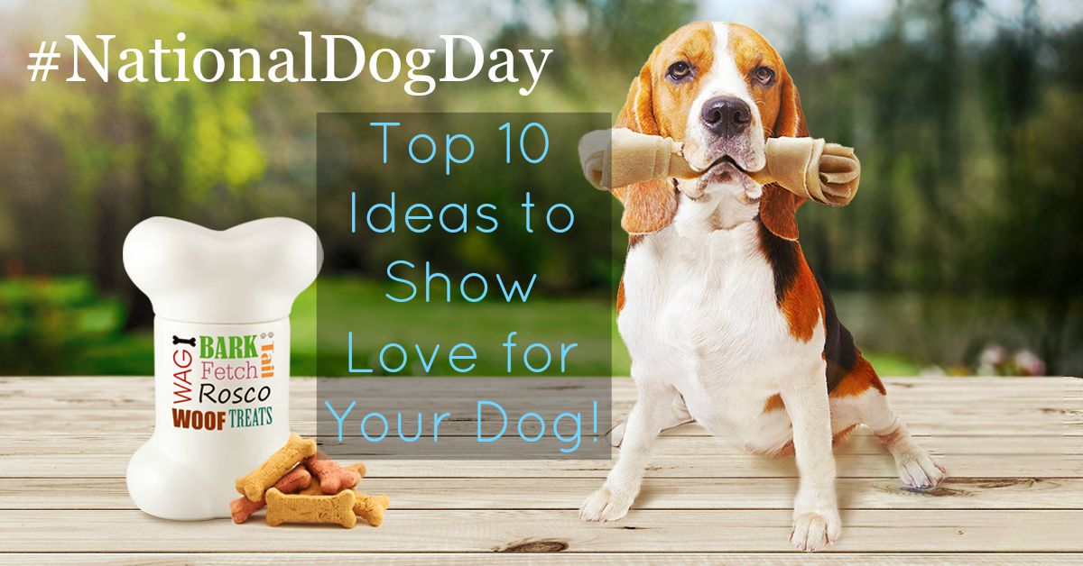 national dog day top 10 ideas to show love for your dog