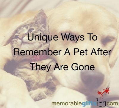 Unique Ways To Remember A Pet After They Are Gone - Memorable ...